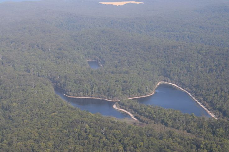 butterfly lake fraser island